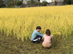 稲刈り体験など、自然に囲まれたツアーでした◎